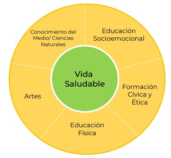 vida-saludable-asignatura-sep