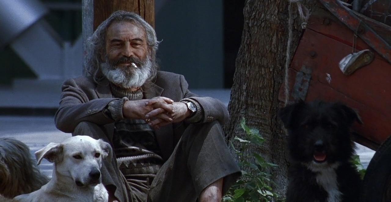 'Amores perros' de Alejandro González Iñárritu se suma a la Criterion Collection
