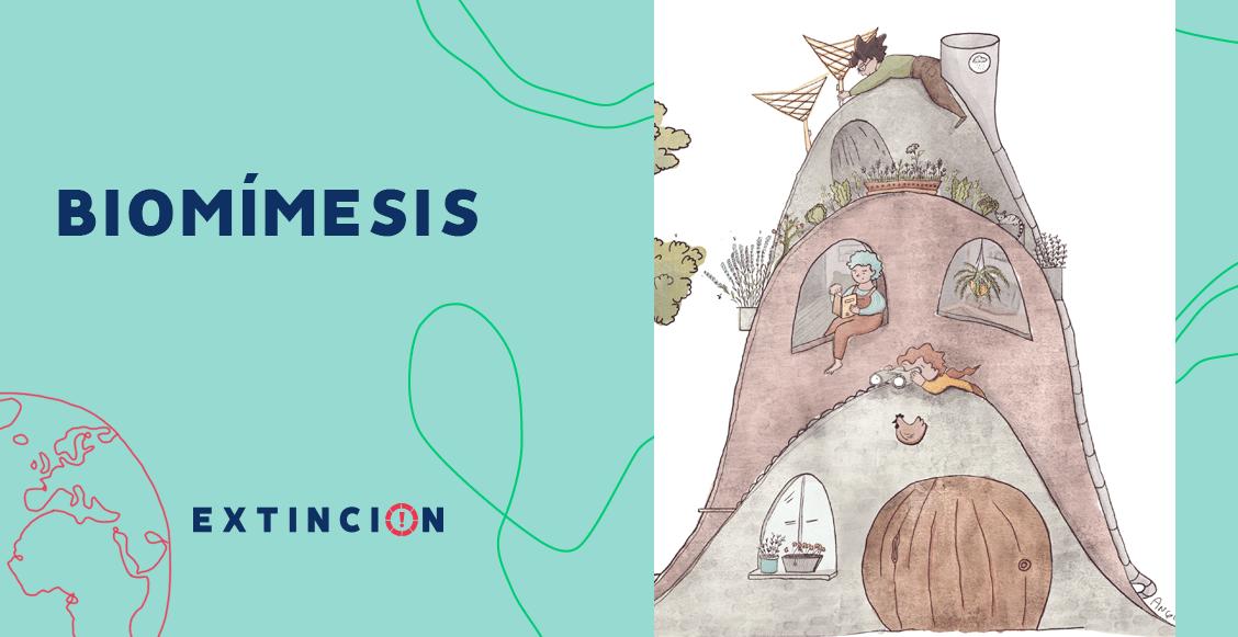 extincion-biomimesis-naturaleza-modelo