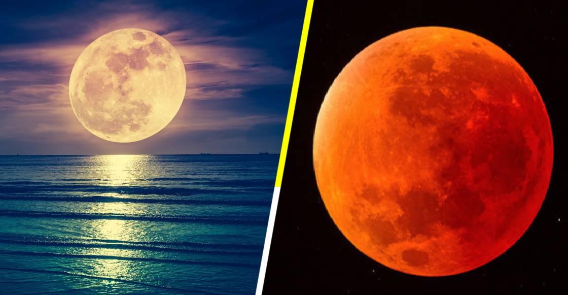 La Luna se está oxidando y podría ser por culpa de la Tierra