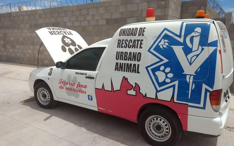 patrulla-proteccion-animal-hermosillo