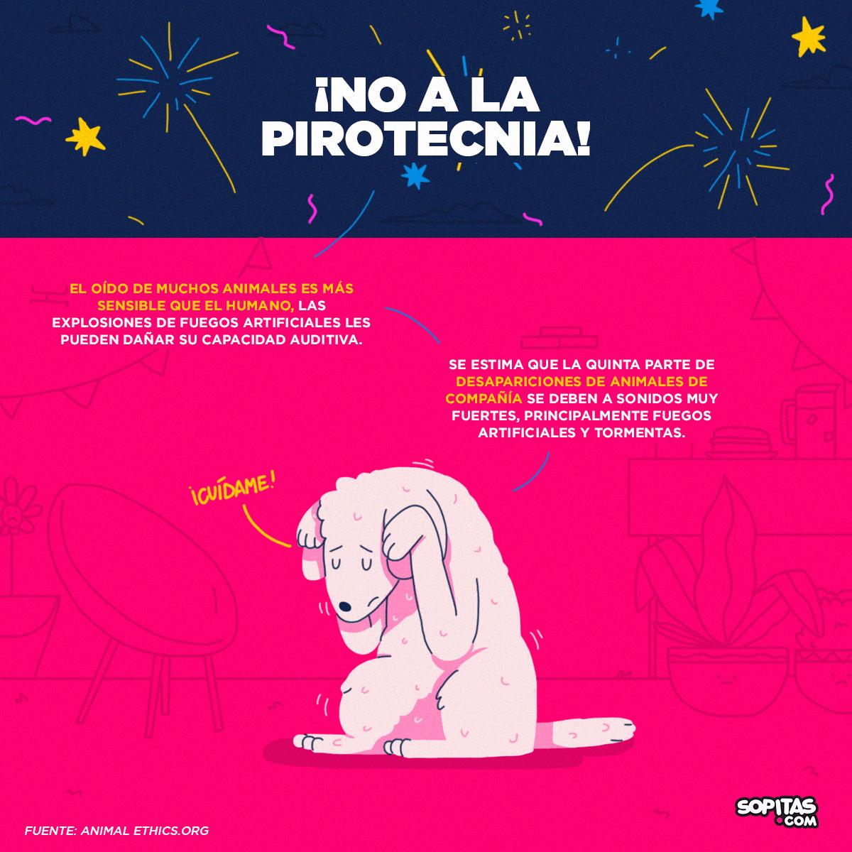 perros-pirotecnia-fuegos-artificiales-cuetes