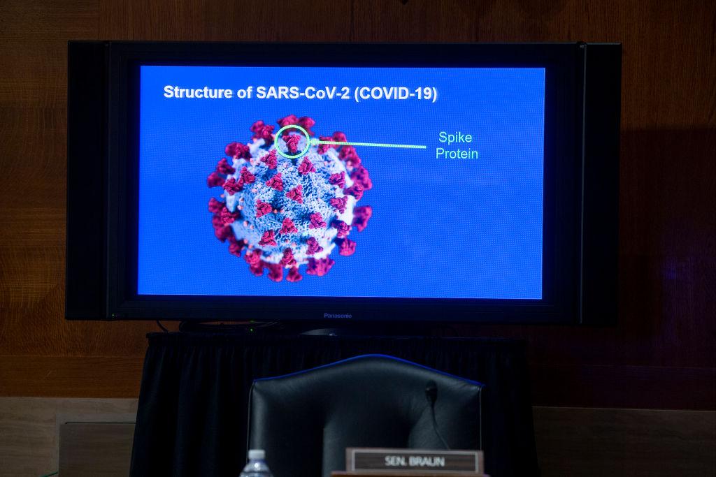vacuna-contra-coronavirus-covid-19