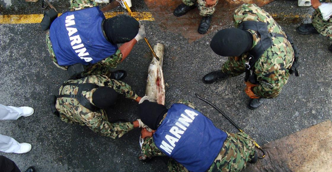 Así es como el Cártel de Sinaloa transportaba cocaína hacia México en tiburones congelados