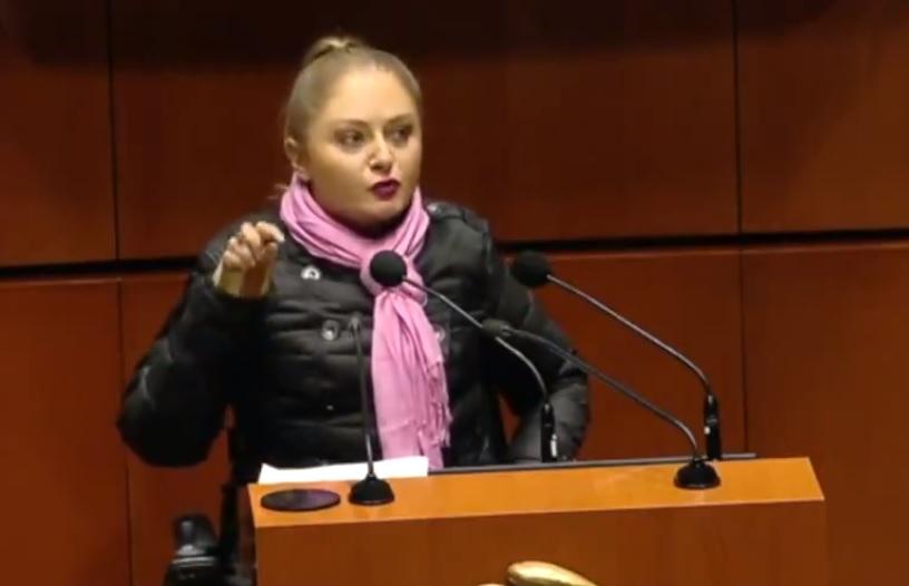 Claudia Anaya, Senado