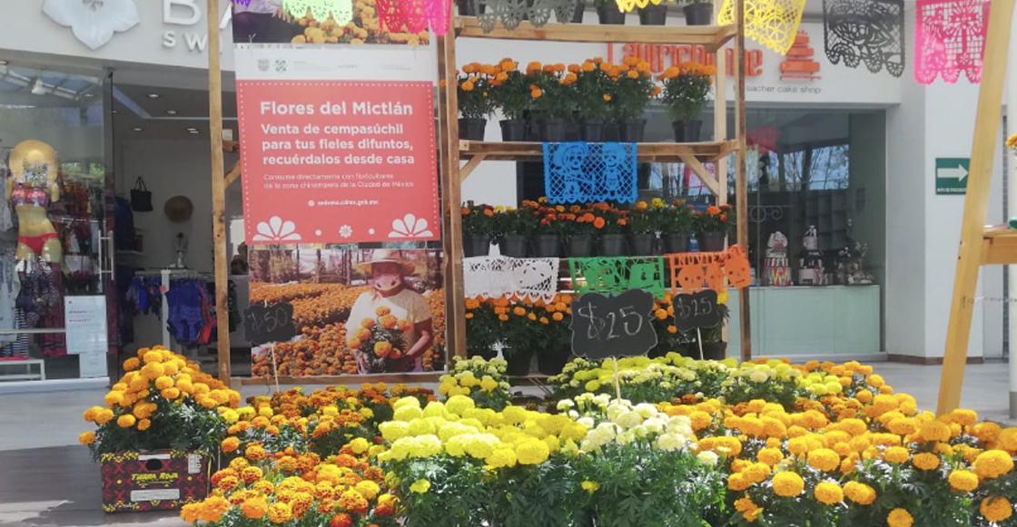 flores-cempasuchil-cdmx