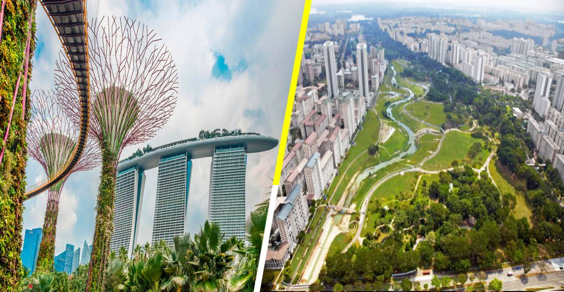 El increíble y ambicioso plan de Singapur para plantar un millón de árboles