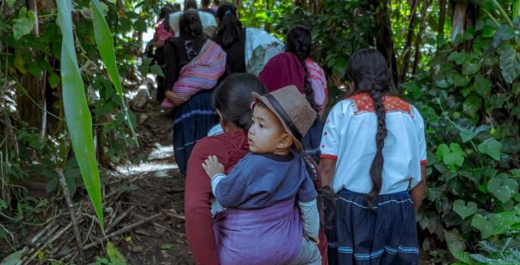 indigenas desplazados chiapas 1