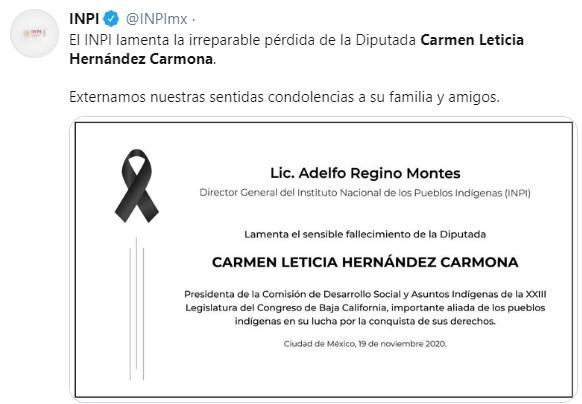 Carmen leticia hernandez diputada morena 2