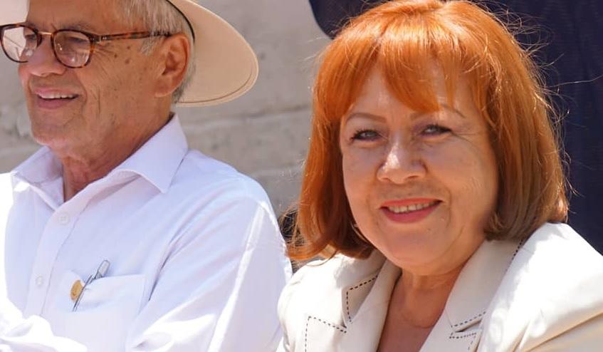 Carmen leticia hernandez diputada morena