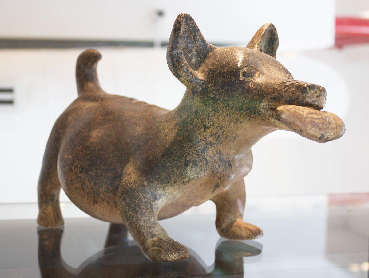 xolo-mascota-cdmx-patrimonio-cultural-senado-xoloitzcuintle-02
