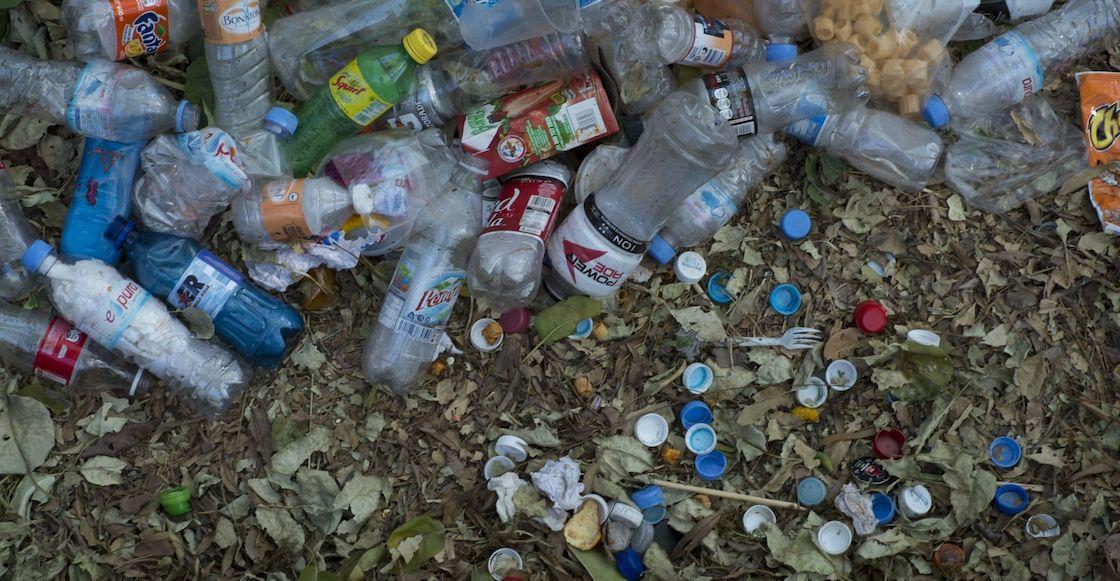 chapultepec-plasticos-basura