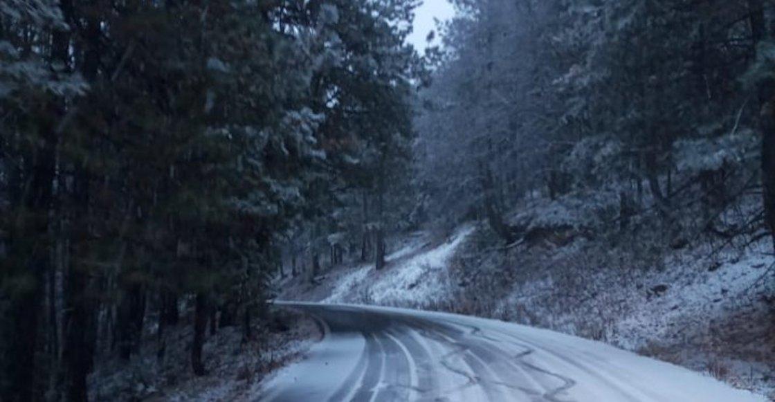 chihuahua-frio-carretera