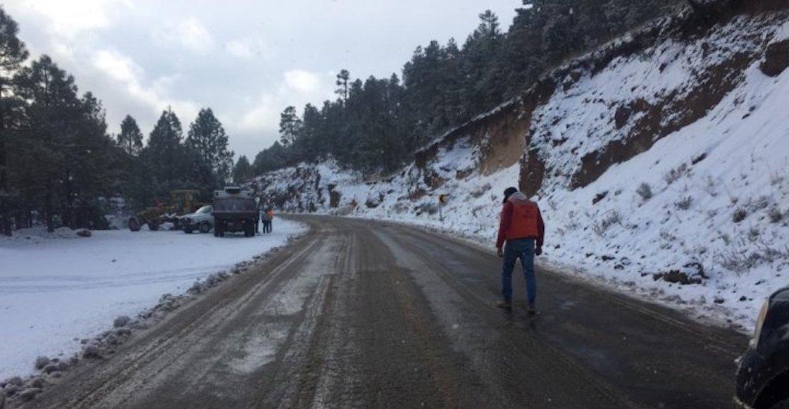Nieve en Chihuahua embellecen caminos: FOTOS