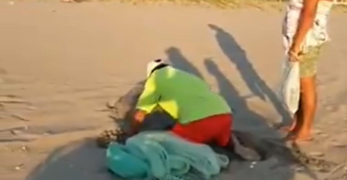 HDLCH: Pareja es captada saqueando un nido de tortuga en Chiapas