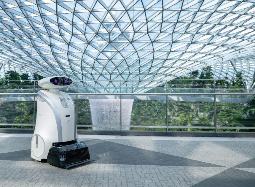 La historia detrás de Franziska, el robot que limpia, canta y bromea en alemán