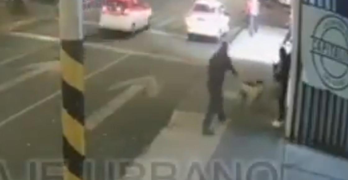 Captan el momento en que un sujeto le dispara a un perrito ¡por ladrarle!