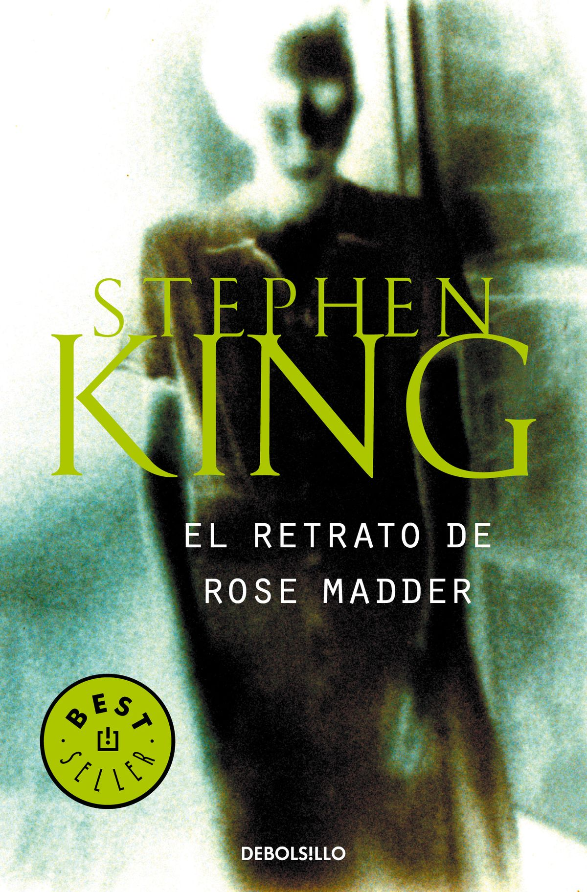 El retrato de Rose Madder de Stephen King