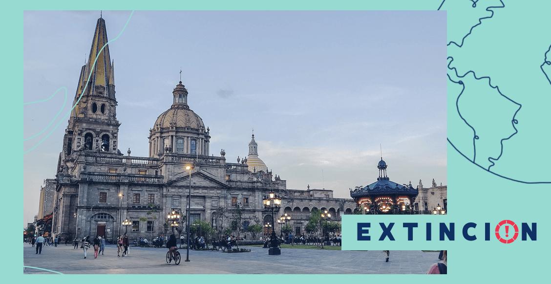 extincion-lo-que-pasa-en-un-municipio