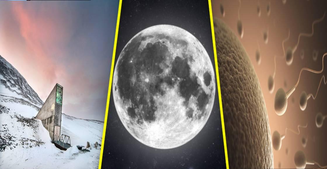 El Arca Lunar: Proponen enviar 6.7 millones muestras de óvulos y espermas al satélite