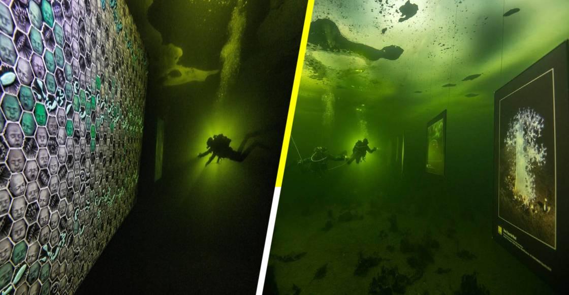 'Hasta que el Hielo se Derrita': La primera exposición submarina en el mundo