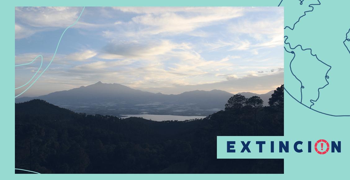 extincion-ambiental-chapala-agradecer