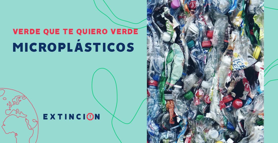 extincion-microplasticos-amenaza-ambiental