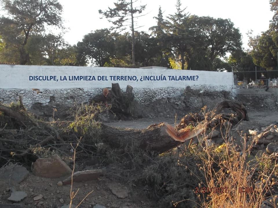 tala arboles tula detencion activista romero 1