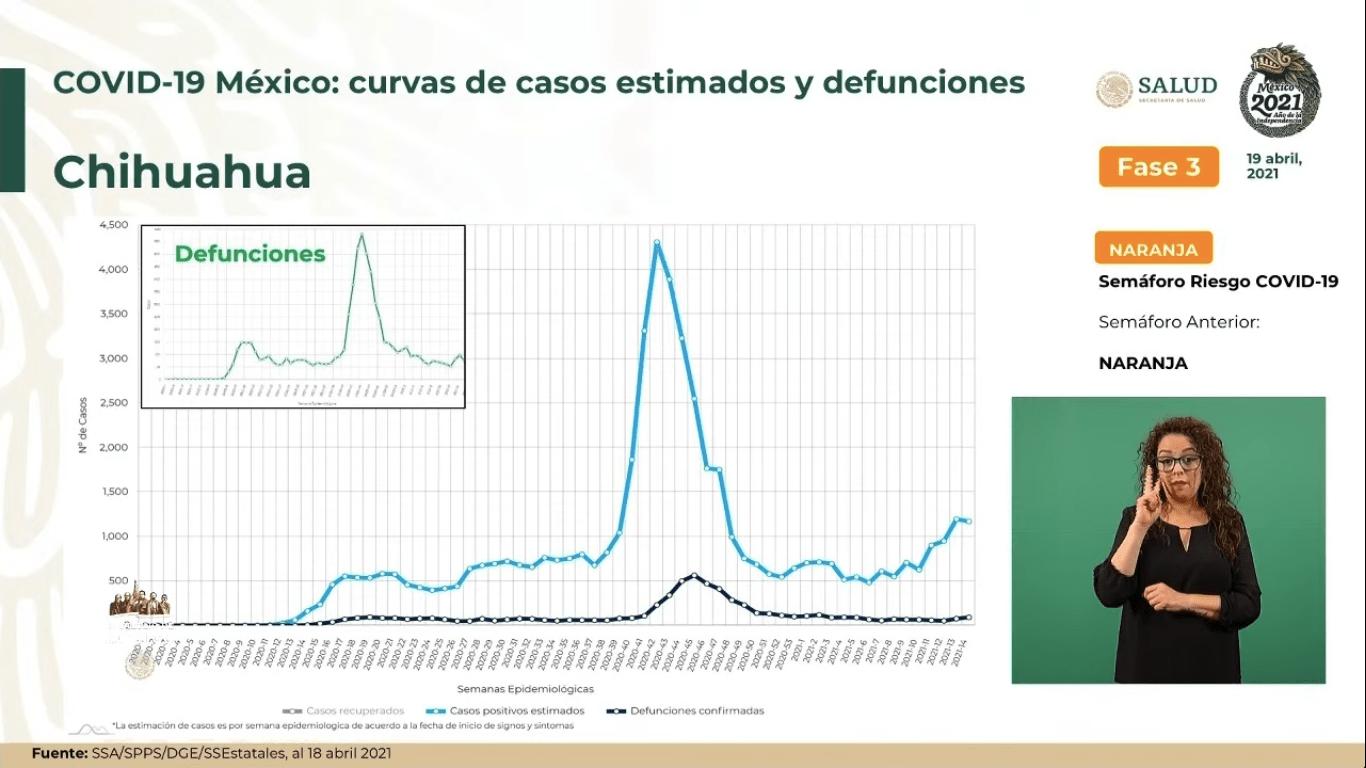 chihuahua-casos-covid