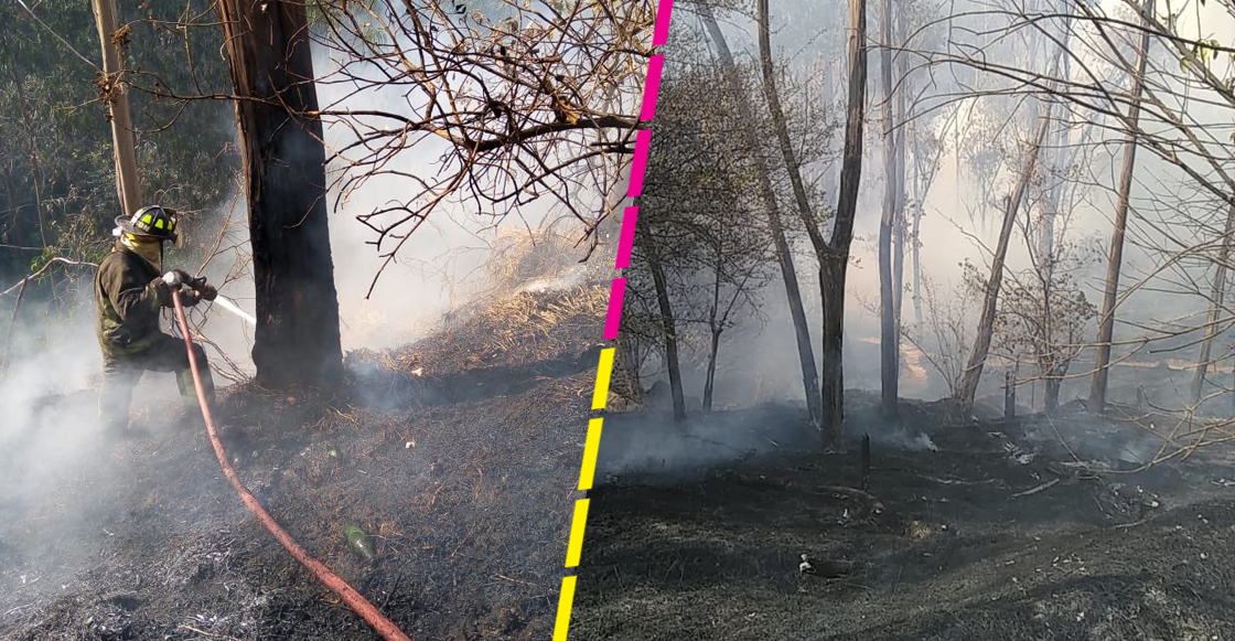 incendio-bosque-chapultepec