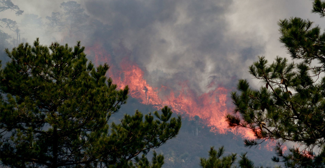 incendio-forestal-mexico