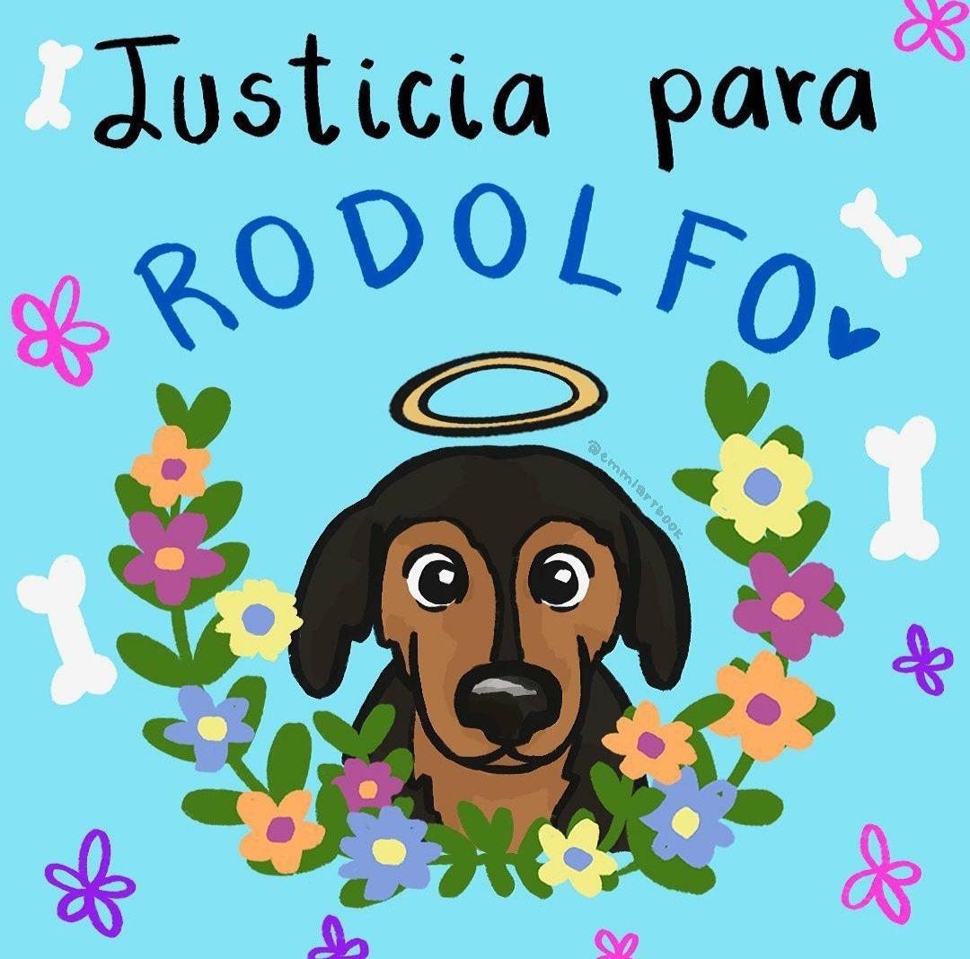 #JusticiaParaRodolfo: Novia de joven que mató a perrito dice que el animal la atacó