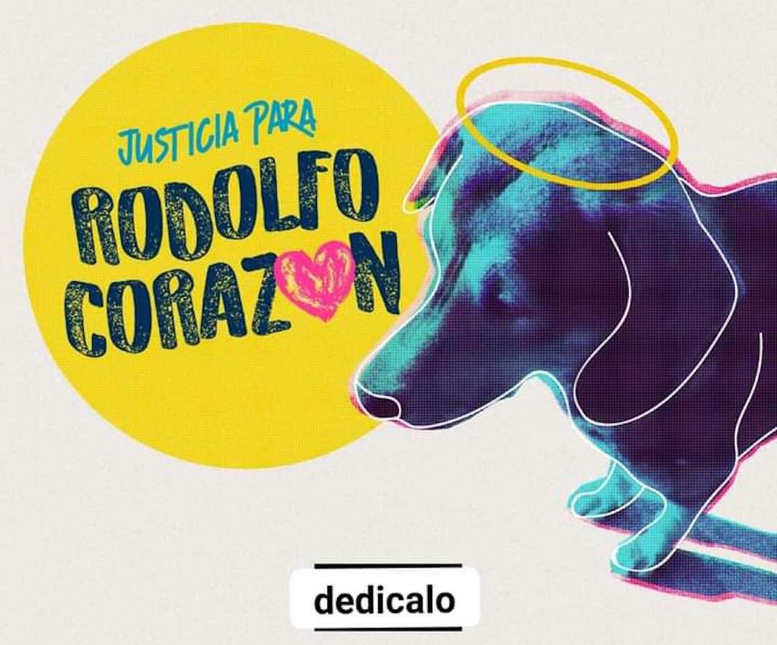 justicia-para-rodolfo-justiciapararodolfo-perrito-callejero-mochis-machete-sinaloa-manifestacion-03