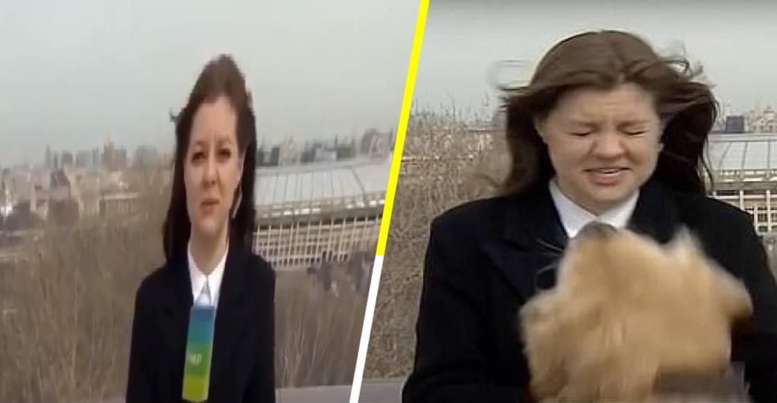 ¡Can-alla! Perrito se roba micrófono de reportera durante noticiero en vivo