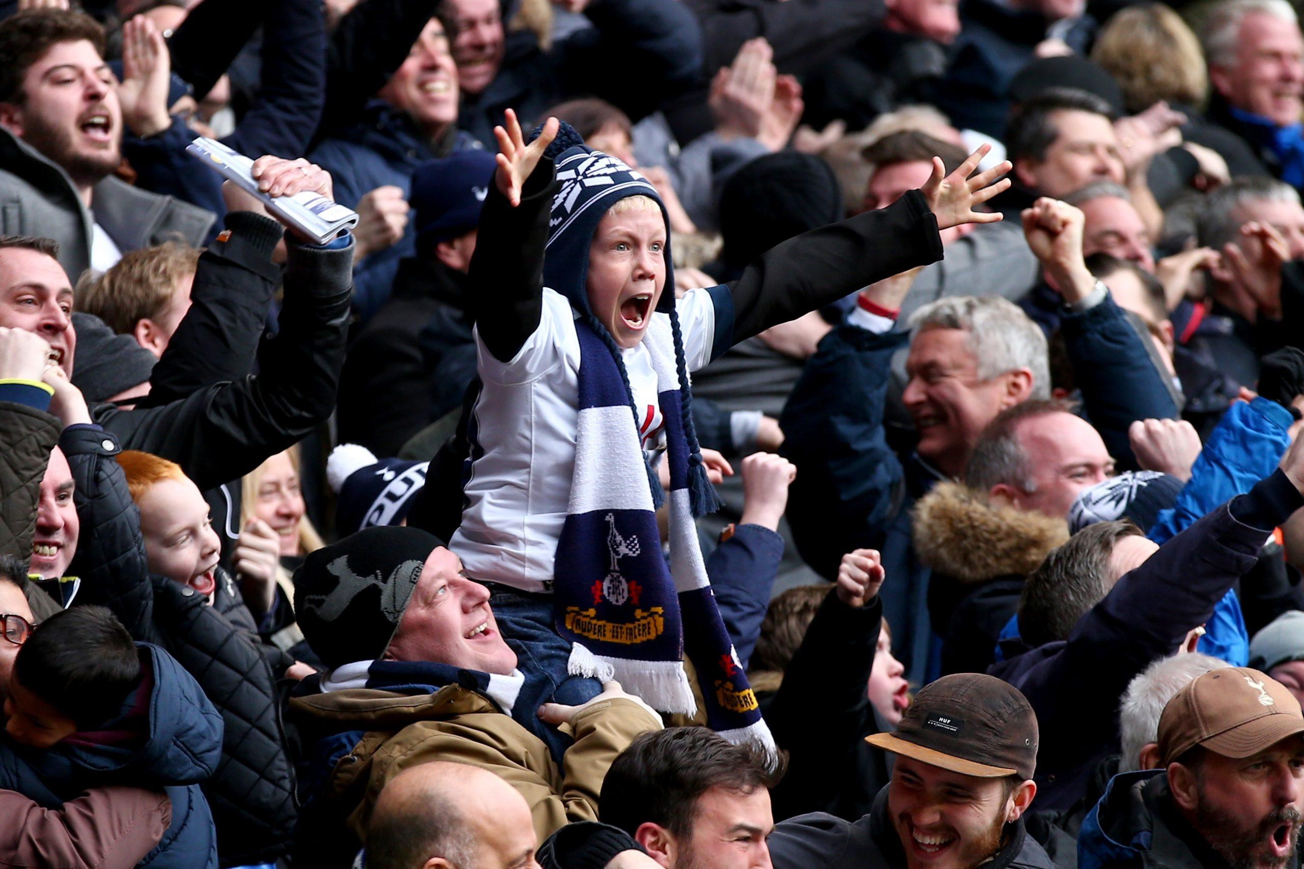 Pequeño aficionado del Tottenham