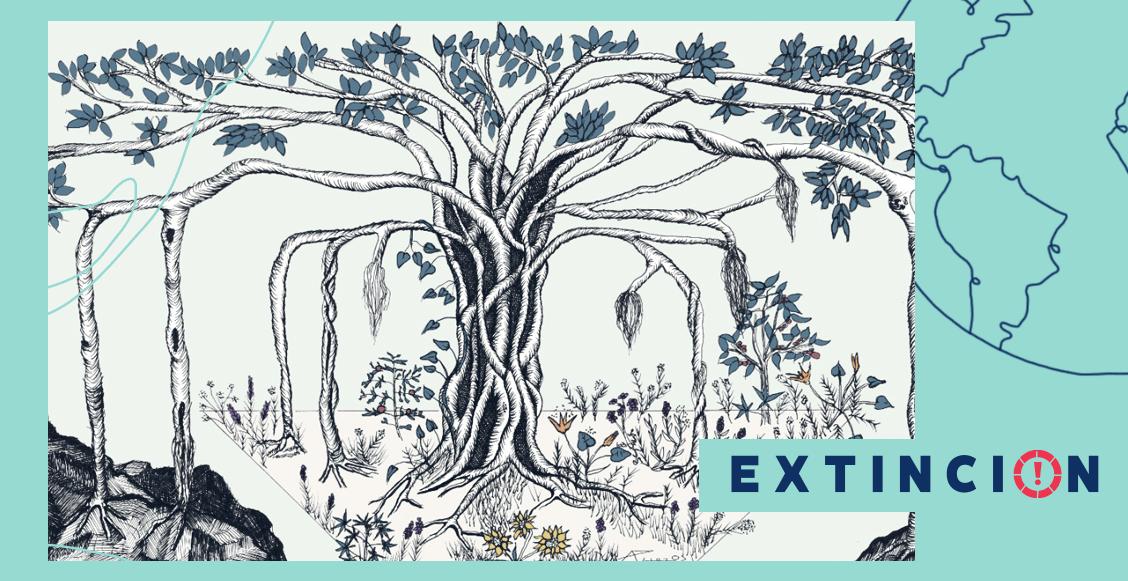 extincion-todos-los-dias-son-de-la-tierra-problematicas