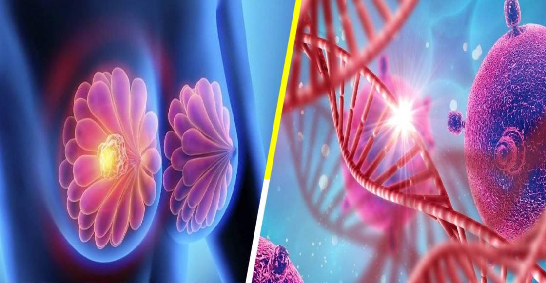 ¡Orgullo nacional! Científicos mexicanos descubren que el cáncer de mama lo provoca un gen