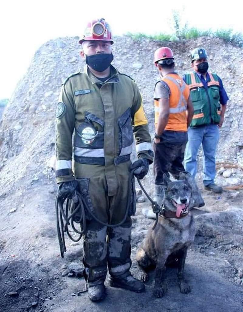 binomios-caninos-coahuila