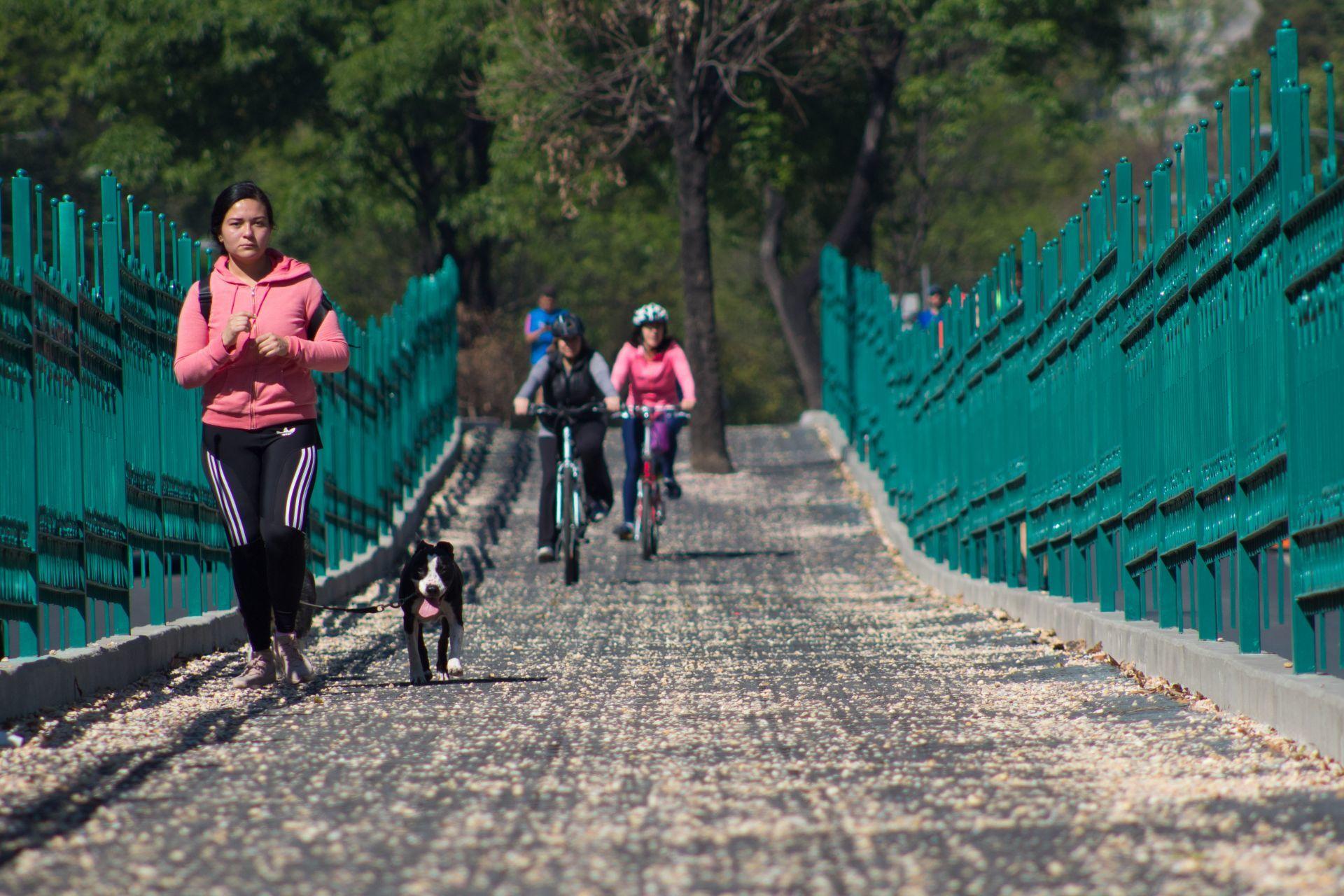 paseo-dominal-muevete-bici