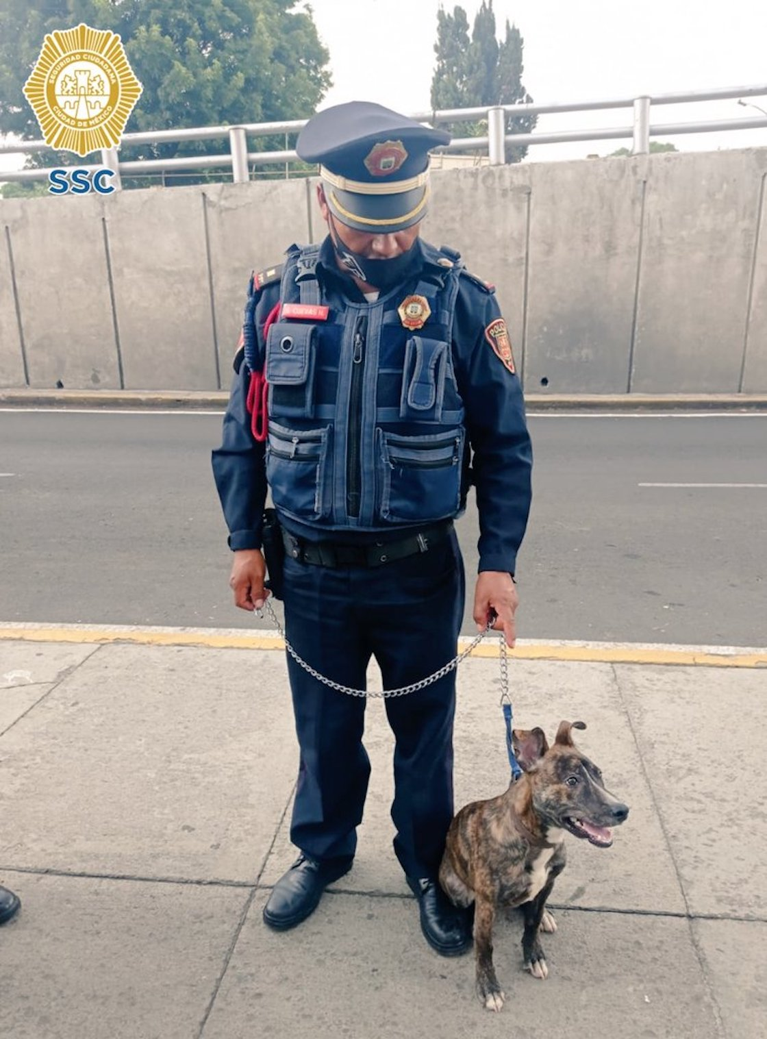 policia-adopta-perrito-abandonado-cdmx