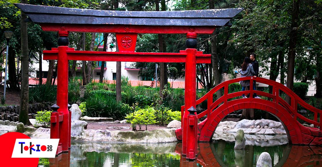 Plan de fin de semana: 5 lugares para sentirte en Japón dentro de la CDMX