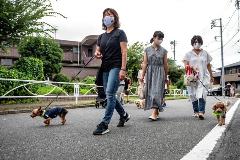 5 notas que son virales en Japón y que serían extrañas en México