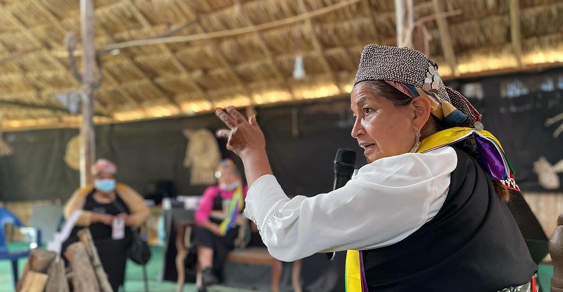 Elisa Loncon mapuche Chile 2