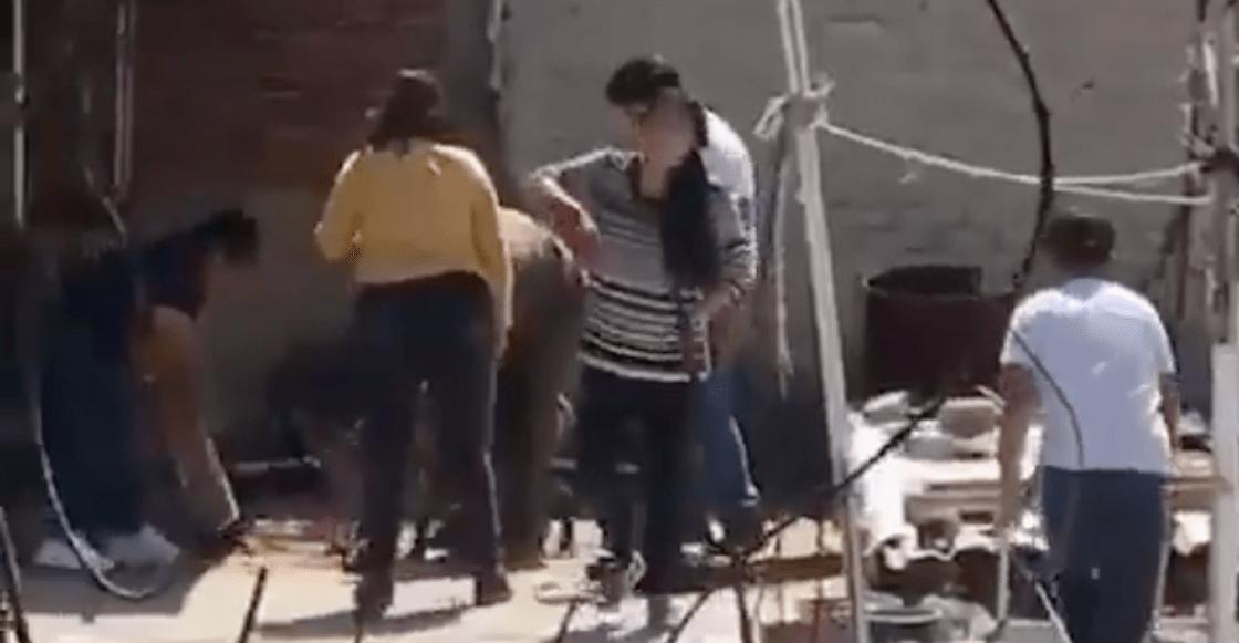 asesinato-perrito-tlalnepantla-video