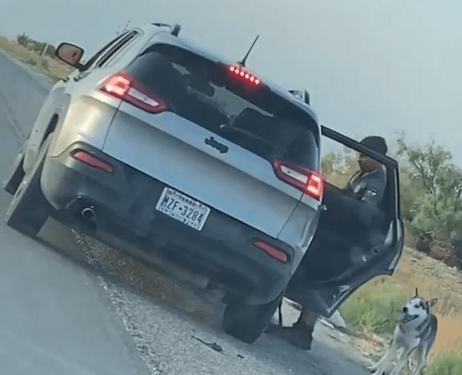 Detienen a un hombre que fue captado abandonando a un perro en plena carretera