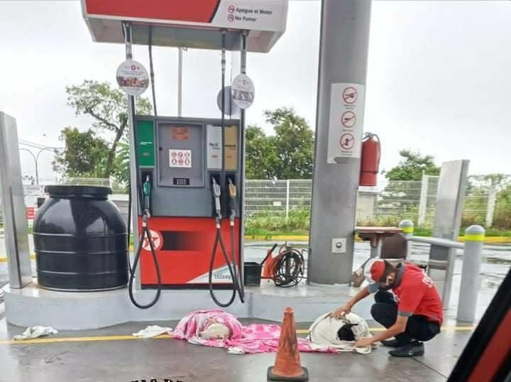 Héroe sin capa: Empleado de gasolinera rescata perritos para buscarles un nuevo hogar