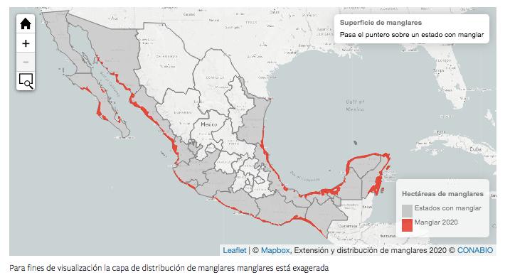 manglares-mexico
