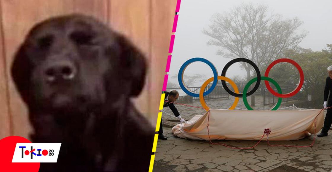 ¡Dios, soy yo de nuevo! Juegos Olímpicos de Tokio 2020 podrían cancelarse de último momento