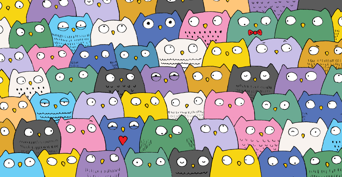 RETO VISUAL: ¿Puedes encontrar al gatito entre el montón de búhos?