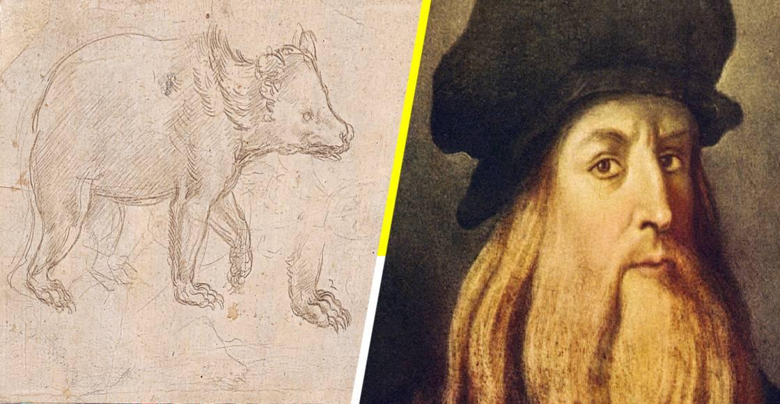 ¡Nos lo ganaron! El boceto 'Cabeza de un Oso' de Da Vinci, rompe récord en subasta